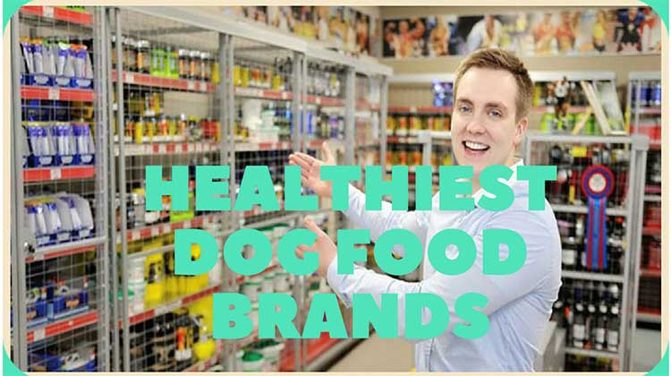 Healthiest Dog Food Brands – Dog Food Advisor of Petdogplanet