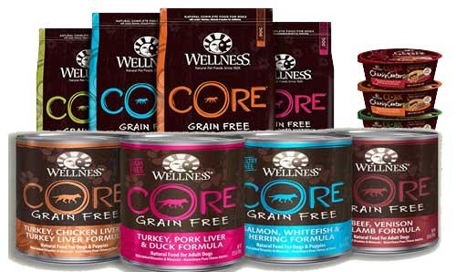 Healthiest Dog Food Brands