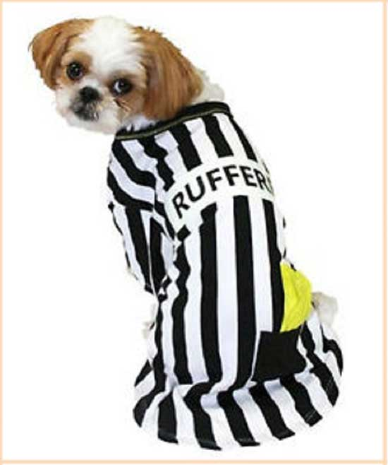 Referee striped dog costume