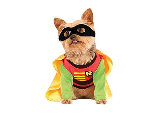 Dog costumes, Teen Titans Pet Costume, Robin