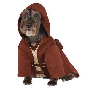Top Ten Must Have Costumes For Your Dog in 2017 | The Comprehensive Review