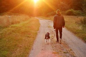 13 MUST-KNOW TIPS FOR NEW DOG OWNERS