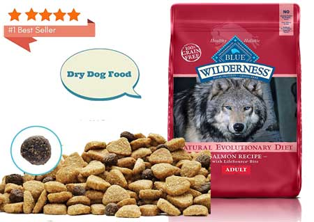 High Protein Dry Adult Dog Food