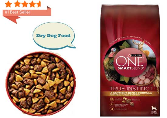 best-dry-dog-food