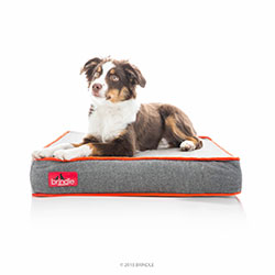 Brindle Designer Waterproof Memory Foam Dog Bed
