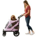 10 Tips for Choosing the Best Dog Stroller for Small Dogs