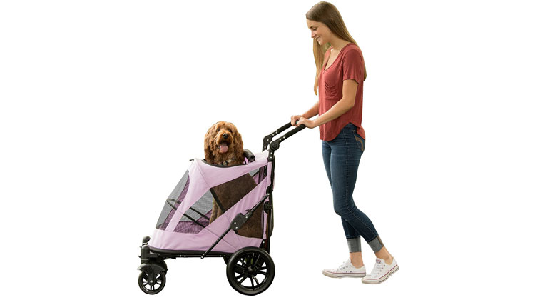 Best Dog Stroller for Small Dogs