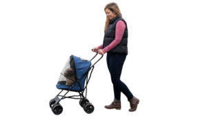 Need A Dog Stroller