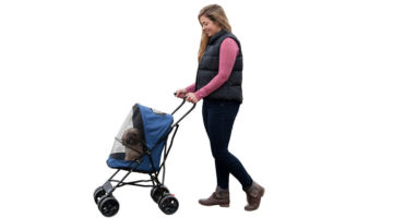 Does Your Small Dog Need A Dog Stroller?