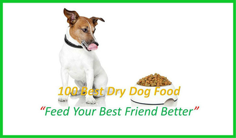 100 best dry dog foods