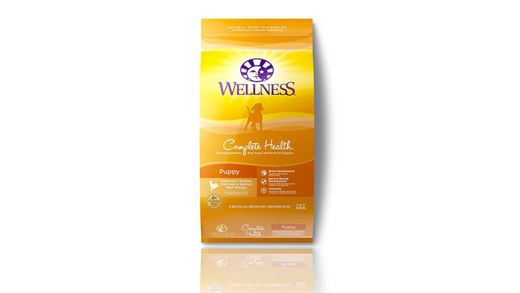 wellness dry puppy food