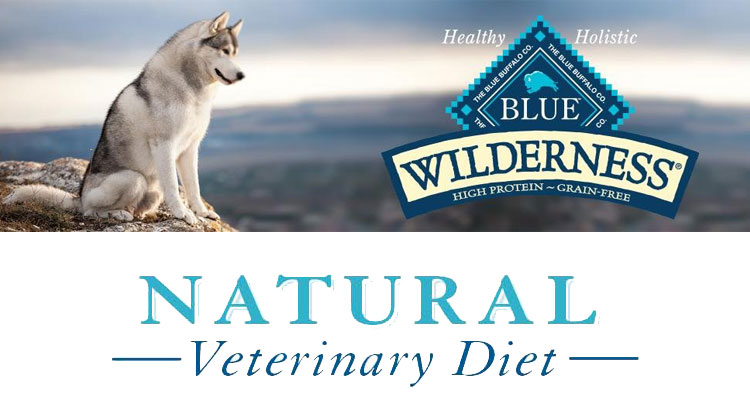 Blue Buffalo Dog Food Review