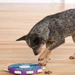Utmost Interactive Toys for Dogs