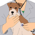 8 Famous Dog Breeds with the Most Health Issues