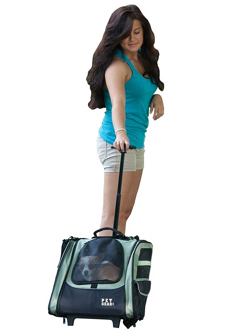 Pet Gear I-GO2 Sport Roller Backpack for cats and dogs