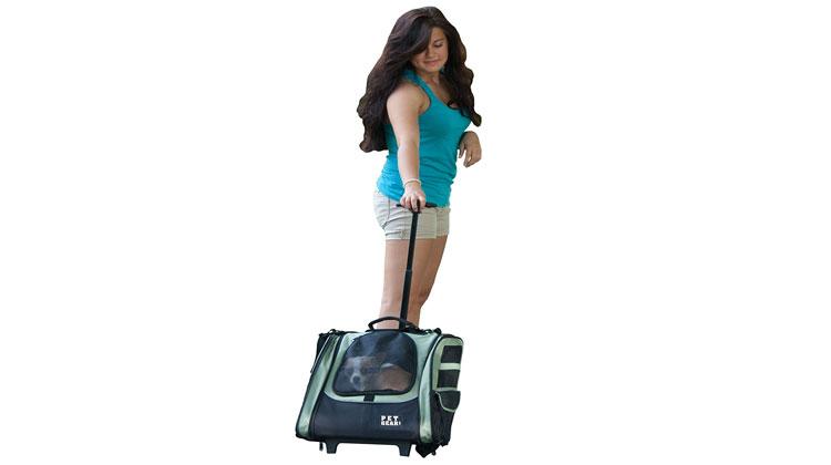 Top 5 Best Dog Backpack Carrier Reviews