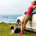 What you should know when you travel with a small dog?
