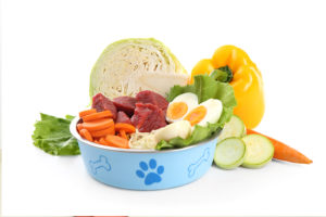 dog nutritional requirements
