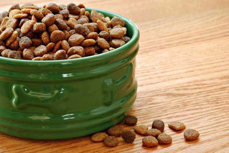 dry dog food for ear infection