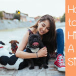 The Dog Owner's Guide to Hiring a Pet Sitter