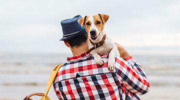 5 Ways to Make Traveling With Your Dog Easier
