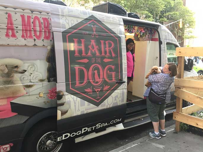 Best Mobile Dog Grooming