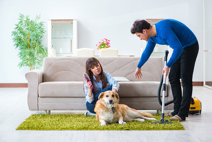 Removing Pet Hair from Your Couch with a Vacuum