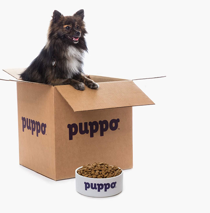 Puppo Dog Food Review