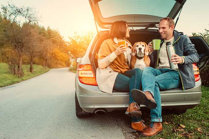 Tips for First-Time Fur Parents When Having Road Trips With Dogs