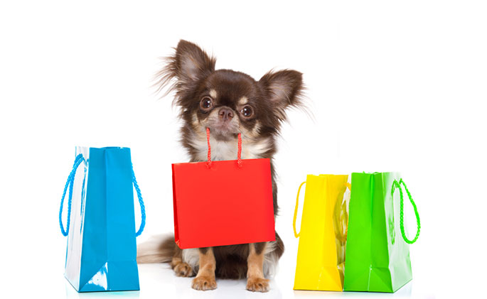 Benefits Of Using Promo Codes When Shopping For Your Dog