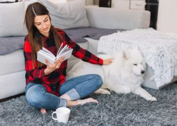 Commonly Asked Questions for Dog Owners