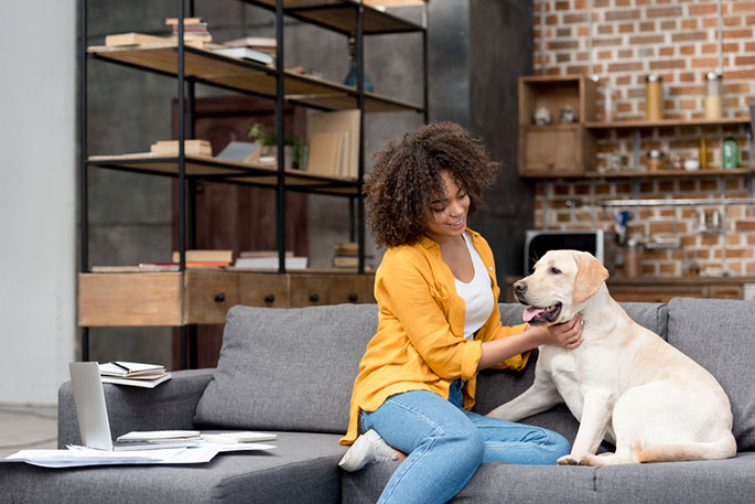 How to make your pet comfortable in your home