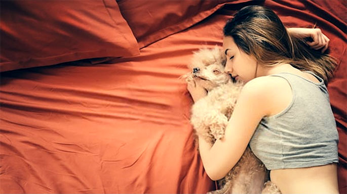 Health Risks Of Sleeping With Pets