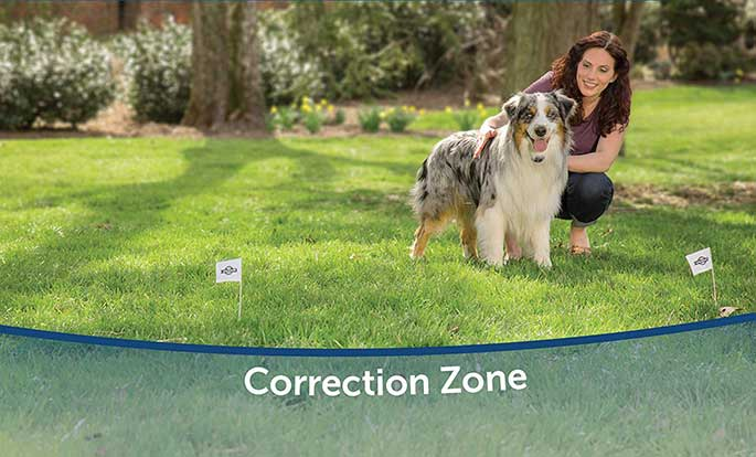 How To Install A Wireless Dog Fence