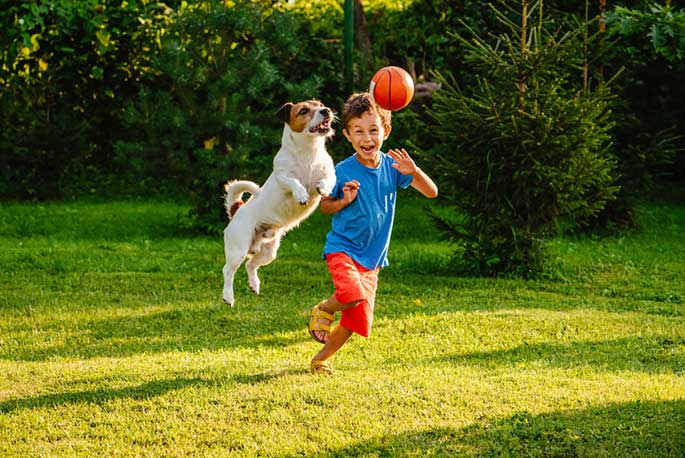 The Pros and Cons of Using a Pet to Teach Your Child Responsibility