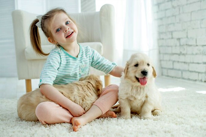 Reasons Why Kids Should Have Pets