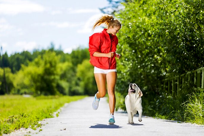 Working Out With Your Dog