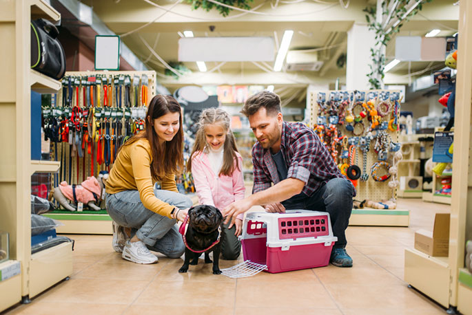 Online Pet Supply Store