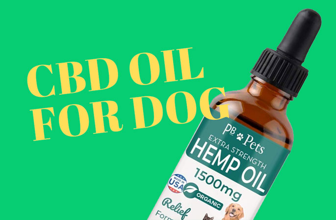 cbd oil for dogs