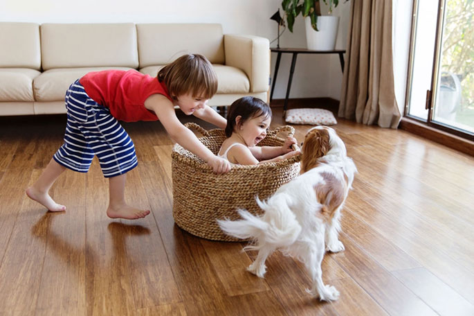 Train Your Dog to Play Nice With Children and Babies