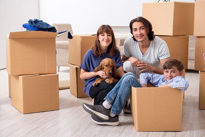 International Pet Movers in Singapore