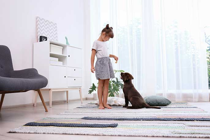 Training Tips For New Dog Parents