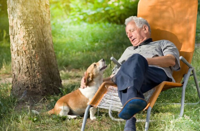 Why Dogs Are Great for Retirees