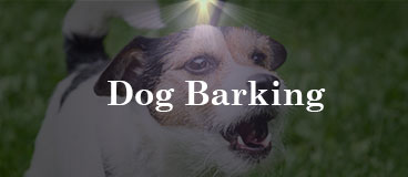 dog barking-category image