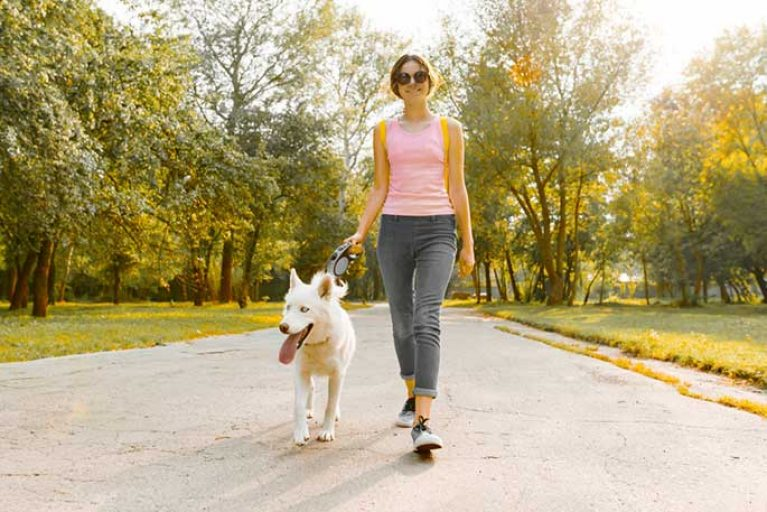 Tips For Making Life Easier For You And Your Dog
