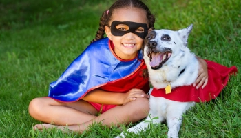 Top Ten Amazing Dog Costumes For Your Dog in 2017