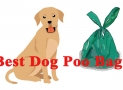 Things To Consider When Looking For The Best Dog Poo Bags