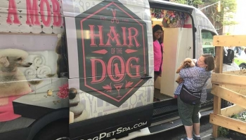 How to Choose the Best Mobile Dog Grooming Service