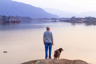 8 Dog Caretaking Tips for Seniors