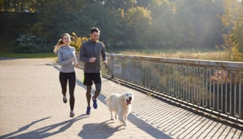 Five Easy Steps to Promote Pet Wellness